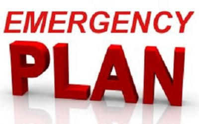 Have You An Emergency Plan? By Dolores
